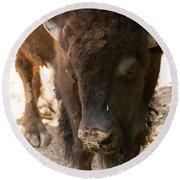 Waco Texas Buffalo Nose Drip Round Beach Towel