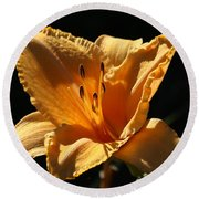 Yellow And Cream Day Lily Round Beach Towel