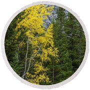 Yellow And Green Round Beach Towel
