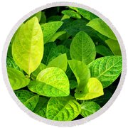 Yellow And Green Leaves Round Beach Towel
