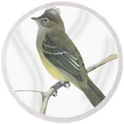 Yellow Bellied Elaenia  Round Beach Towel by Anonymous