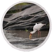 Yellow-billed Stork Fishing In River Round Beach Towel