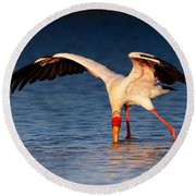 Yellow-billed Stork Hunting For Food Round Beach Towel