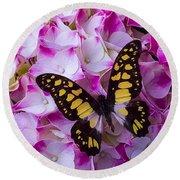 Yellow Black Butterfly On Hydrangea Round Beach Towel