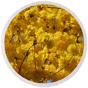 Yellow Blossoms Of A Tabebuia Tree Round Beach Towel