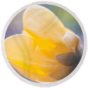 yellow buttercup flower II Round Beach Towel