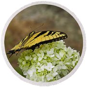 Yellow Butterfly 2 Round Beach Towel