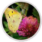 Yellow Butterfly On Pink Clover Round Beach Towel
