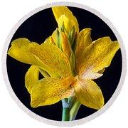 Yellow Canna Flower Round Beach Towel