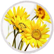 Yellow Country Wildflowers Round Beach Towel