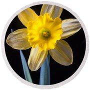 Yellow Daffodil Round Beach Towel