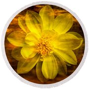 Yellow Dahlia Under Water Round Beach Towel