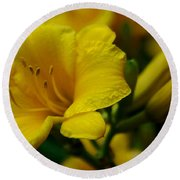 One Day Lily  Round Beach Towel