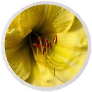 Grace Yellow Day Lily Art Round Beach Towel
