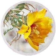 Yellow Desert Flower Round Beach Towel