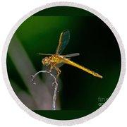 Yellow Dragonfly Round Beach Towel