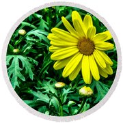 Yellow Flower Of Spring Round Beach Towel