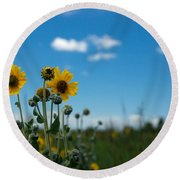 Yellow Flower On Blue Sky Round Beach Towel