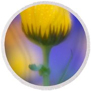 Yellow Flower With Dew Drops Round Beach Towel