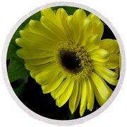 Yellow Gerbera Daisy  Round Beach Towel