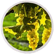 Yellow Grapes In Sunshine Round Beach Towel