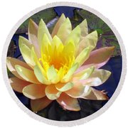 Yellow Hardy Water Lily Round Beach Towel