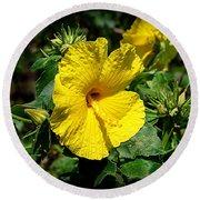 Yellow Hibiscus Hawaii State Flower Round Beach Towel