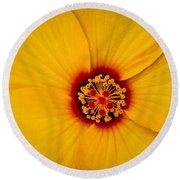 Yellow Hibiscus Round Beach Towel