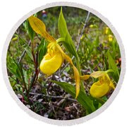 Yellow Lady Slippers Along Emerald Lake Trail In Yoho Np-bc Round Beach Towel