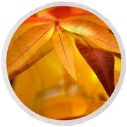 Yellow Leaves At Dawn Round Beach Towel