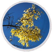 Yellow Leaves In Fall And Deep Blue Sky Round Beach Towel