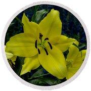 Yellow Lillies Round Beach Towel