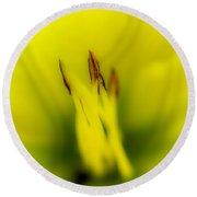 Yellow Lily Round Beach Towel