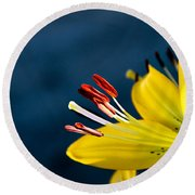 Yellow Lily Stamens Round Beach Towel