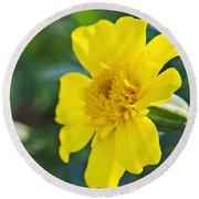 Yellow Marigold Round Beach Towel