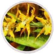 Yellow Miltassia Orchids Round Beach Towel