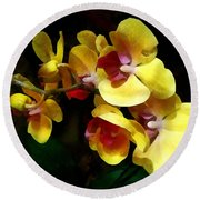 Yellow Orchids Shadow And Light Round Beach Towel