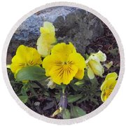 Yellow Pansies Round Beach Towel