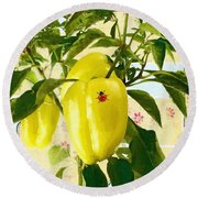 Yellow Pepper Round Beach Towel