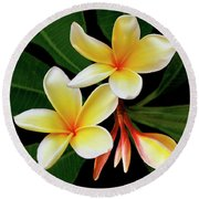 Yellow Plumeria Round Beach Towel by Ben and Raisa Gertsberg