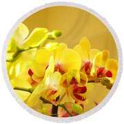 Yellow Red Orchid Flowers Art Prints Orchids Round Beach Towel