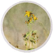 Yellow-red Wildflower With Texture Round Beach Towel