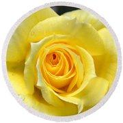 Yellow Rose L Round Beach Towel