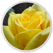 Yellow Rose Ll Round Beach Towel