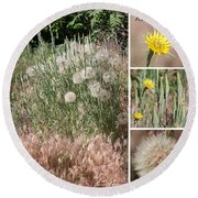 Yellow Salsify Collage Round Beach Towel