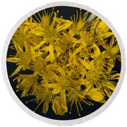 Yellow Sedum Round Beach Towel
