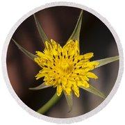 Yellow Star Flower Round Beach Towel