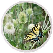 Yellow Swallowtail Butterfly Round Beach Towel