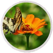Yellow Swallowtail Round Beach Towel
