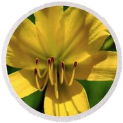 Yellow Too Lily Flower Art Round Beach Towel